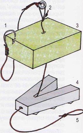 Как ловить сазана на макуху и жмых