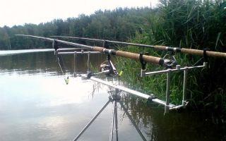 Ловля карпа на донку, как результативный метод в поимке рыбы